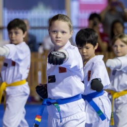 tkd - kids 7plus front stance punch.jpg