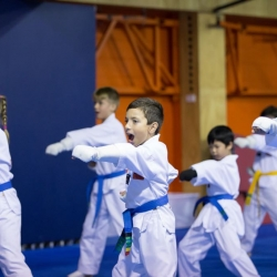 tkd - kids 7plus group horse stance punch3.jpg