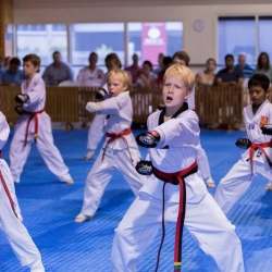 tkd - kids 7plus group horse stance punch5.jpg