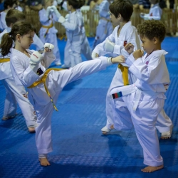 tkd - kids 7plus spar9.jpg
