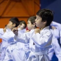 tkd - kids 4to6 guard up2.jpg