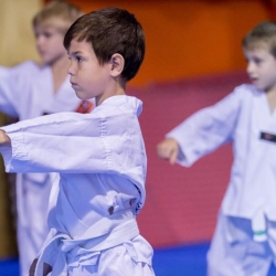 tkd - kids 4to6 horse stance punch.jpg