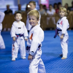 tkd - kids 4to6 front stance low block.jpg
