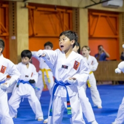 tkd - kids 7plus group horse stance punch2.jpg