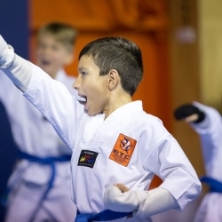 tkd - kids 7plus horse stance punch2.jpg