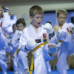 tkd - kids 7plus kick13.jpg