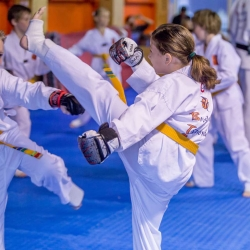 tkd - kids 7plus spar7.jpg