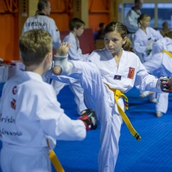 tkd - kids 7plus spar8.jpg