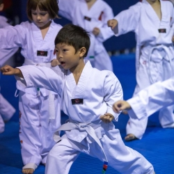 tkd - kids 4to6 front stance punch.jpg