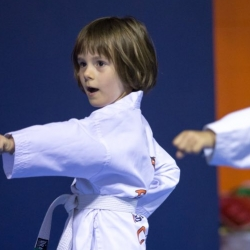 tkd - kids 4to6 horse stance punch2.jpg