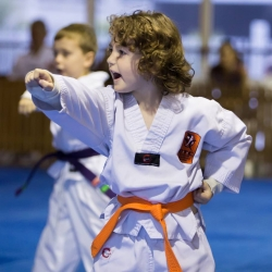 tkd - kids 4to6 horse stance punch5.jpg
