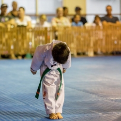 tkd - kids 4to6 horse stance punch9.jpg