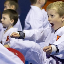 tkd - kids 4to6 pad kick3.jpg