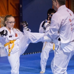 tkd - adults spar 3.jpg