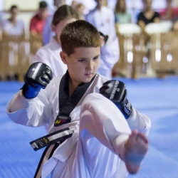tkd - kids 7plus kick7.jpg