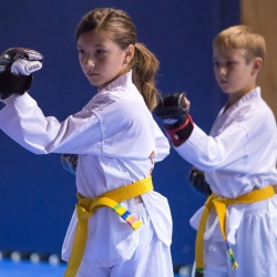 tkd - kids 7plus poomse2.jpg