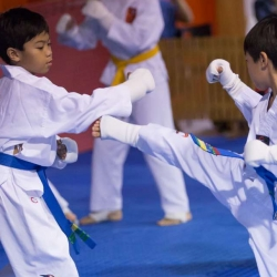 tkd - kids 7plus spar3.jpg