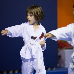 tkd - kids 4to6 horse stance punch3.jpg