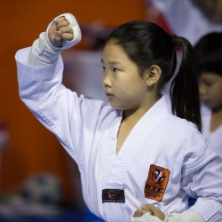 tkd - kids 7plus face block.jpg