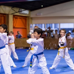 tkd - kids 7plus group horse stance punch.jpg