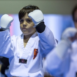 tkd - kids 7plus guard up2.jpg