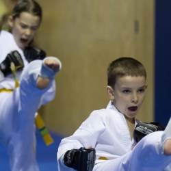 tkd - kids 7plus kick3.jpg