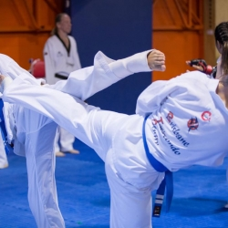 tkd - adults spar1.jpg