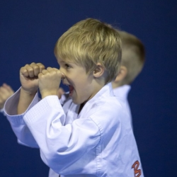 tkd - kids 4to6 guard up.jpg