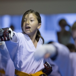 tkd - kids 7plus front stance punch3.jpg