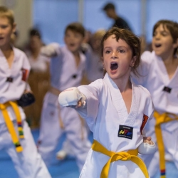 tkd - kids 7plus group horse stance punch4.jpg
