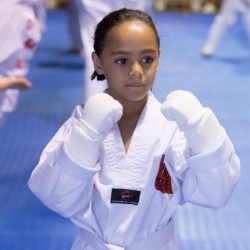 tkd - kids 7plus guard up.jpg