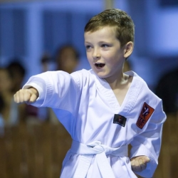 tkd - kids 4to6 horse stance punch4.jpg