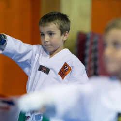 tkd - kids 4to6 horse stance punch8.jpg