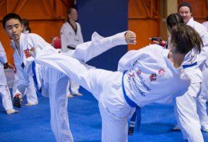 Martial Arts Training (2)